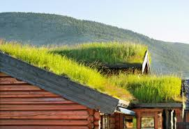 roof garden design how to build a rooftop garden