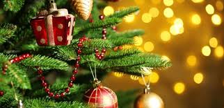 Christmas Decorations Online Ireland by Buy Your Christmas Tree In Sandymount Dublin 4 And Support Enable