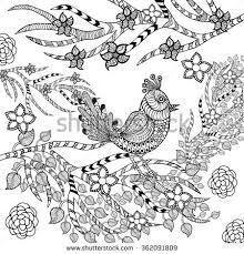 zentangle stylized tropical bird flower garden stock vector