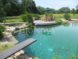 Backyard Swimming Ponds by 274 Best Natural Pool Images On Pinterest Natural Pools