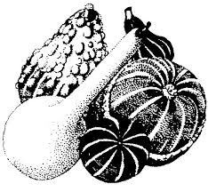 gourds mississippi state extension service