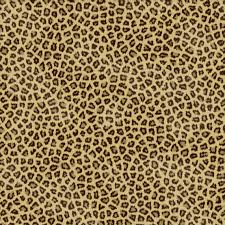 wallpaper for walls cheetah print wallpaper vidur net