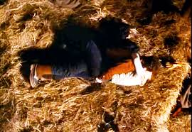 Hay In The Middle Of The Barn Song The 20 Most Satisfying Kisses In Tv History Vanity Fair
