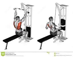 wide grip lat pull down illustration fitness pinterest