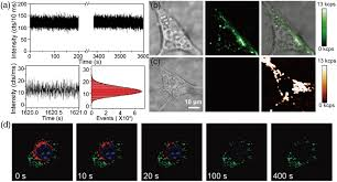 osa inorganic nanoparticles for optical bioimaging