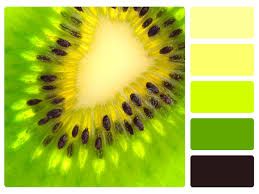 green kiwi colour palette swatch stock images image 35404074