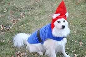Lawn Gnome Halloween Costume Halloween Pop Colour