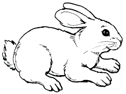 easter bunny coloring pages toddlers cute cartoon sheets