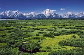 10 elevated facts about grand teton national park mental floss