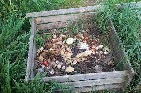 Backyard Composter Composting In Backyard Backyard And Yard Design For Village