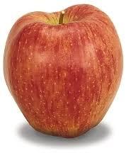 organic fruit of the month club organic apple of the month club gourmet apple of the month club