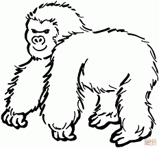 thick gorilla coloring page animal pictures of gorillas