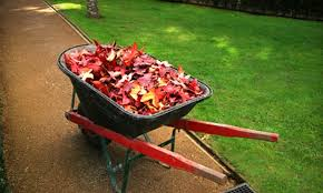 Fall Cleanup Landscaping by Up To 60 Off Fall Cleanup Or Lawn Prep Package Greensvue