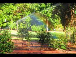 City Botanic Gardens Brisbane City Botanic Gardens