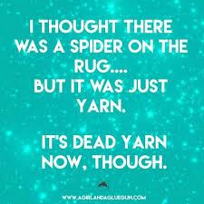 I Saw A Spider Meme - 73 best spider killer images on pinterest funny stuff funny