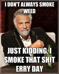 Smoke Weed Meme - 23 reasons smoking weed is good for you cannabis 420 quotes and