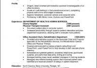 it professional resume format fred resumes