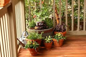 container gardening pros and cons grow vegetables on your deck