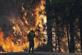 Wildfires California September 2015 by California U0027s Worst Wildfires Have Had Many Different Causes Sfgate