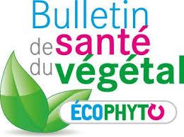 chambre d agriculture paca bulletin de santé du végétal bsv draaf paca