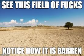 No Fucks Given Meme - image tagged in barren field no fucks given i don t give a fuck