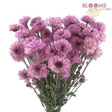 purple wedding flowers purple flowers diy purple wedding flowers bloomsbythebox
