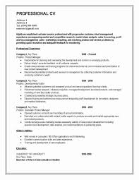 cv resume format sales marketing resume format luxury cv format for matric