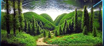 japanese aquascape 100 gambar desain aquascape yang paling keren aquarium pinterest