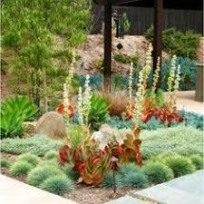 garden design drought tolerant interior design