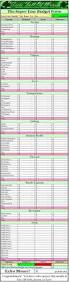free printable budget sheet printable budget sheets budget