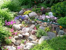 small rock garden ideas rock garden home landscaping ideas