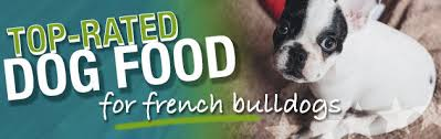 what is the best dog food for a french bulldog