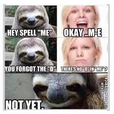 Spell Me Meme - 15 best sloth man images on pinterest hilarious creepy sloth