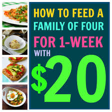 how to feed your family with just 20 for an entire week