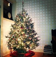 how much for christmas trees at home depot on black friday 2017 tips for prolonging the life of a fresh cut christmas tree