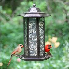 cardinal bird home decor perky pet 6 lb tall tulip garden lantern bird feeder walmart com