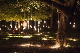 hanging tree lights shared by inspirello on we it
