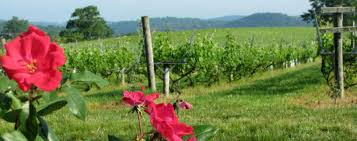 Virginia Wine Trail Map by Virginia Wineries Visit Virginia Wine Country Fairfax County Va