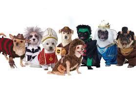 Spirit Halloween Pet Costumes Hilarious Humane Halloween Costumes Pets