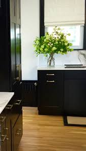 Full Overlay Kitchen Cabinets by 56 Best Entertaining Cabinetry Images On Pinterest Kitchen Ideas