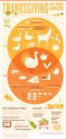 thanksgiving slogans 20 fascinating infographics on thanksgiving 2013 infographics