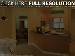 tips for choosing interior paint colors images with amusing modern