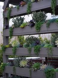Vertical Garden Ideas Landscaping With A Vertical Garden Ideas U0026 Design Photos Houzz