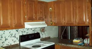 mobile home cabinet doors lovely design ideas mobile home cabinet doors for cheap replacement