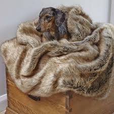 Dog Sofa Blanket 13 Best Faux Fur Throws And Dog Blankets Images On Pinterest Dog