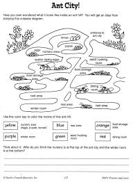 cool ant worksheets google search ants unit pinterest ants