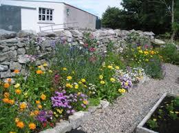 your edible garden design pictures