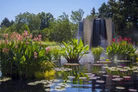 Colorado Botanical Gardens Panoramio Photo Of And Lilly Pond Denver Botanic