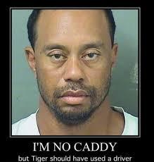 Tiger Woods Memes - tiger woods mugshot becomes instant meme after dui 2 the tango
