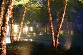 Landscape Flood Light by Chicago Landscape Lighting Safe Electrical Service